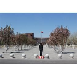 安保,成保保安服务公司,天津小区安保服务公司