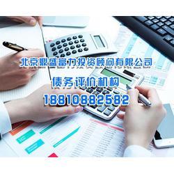 信用债务评级-北京鼎盛富力投资公司-北京债务评级图片