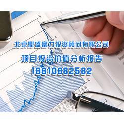 北京鼎盛富力投资公司 投资价值分析报告书