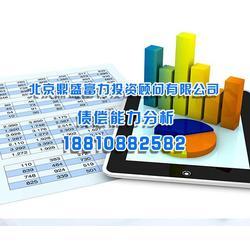 偿债能力分析-偿债能力-北京鼎盛有限公司(查看)图片