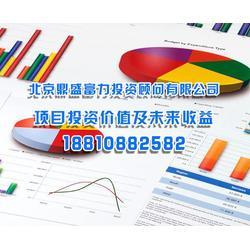 北京鼎盛有限公司-企业项目投资价值及未来收益分析图片