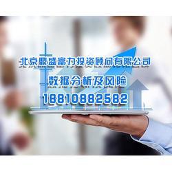 数据分析及风险控制报告公司、北京鼎盛有限公司图片