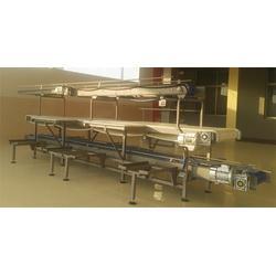 肉类分割线-山东博泓食品机械设备-肉类分割线图片