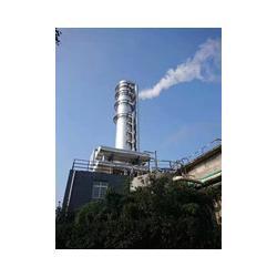 麥芽糖蒸發器制造廠家-舟山麥芽糖蒸發器-青島藍清源圖片