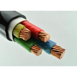 聚氯乙稀绝缘电力电缆、电力电缆、三阳线缆(图)