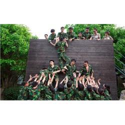 夏令营活动项目,滁州夏令营,南京雪狼图片