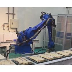 天津工业机器人应用|康鸿智能(推荐商家)图片