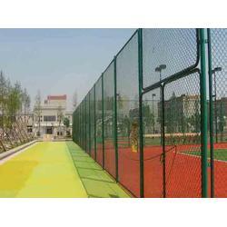 漳州球场护栏网-河北华久-球场护栏网加工图片