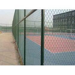宜春球场护栏网-河北华久-球场护栏网厂家图片