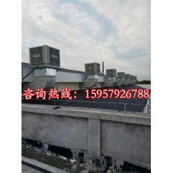 工业冷风机报价,工业冷风机,【爽巴冷风机】(查看)图片