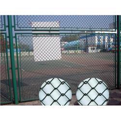 体育场勾花网热销、体育场勾花网、河北华久图片