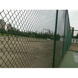 河北华久、体育场防护网厂家、体育场防护网图片