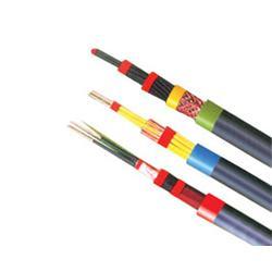 淮南电缆 控制电缆厂家 安徽绿宝(优质商家)图片