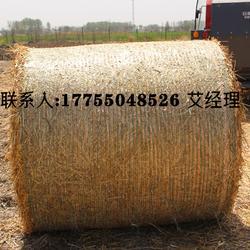 秸秆打包网物牧草网牧草专用打包网优牧达圆捆机专用打包网图片