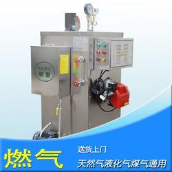 50KG/H蒸气发生器全自动锅炉厂家图片