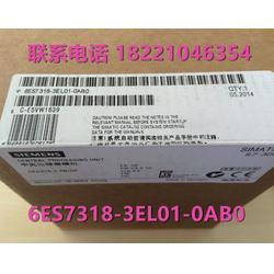 6ES7318-3EL01-0AB0 S7-300 CPU319-3 PN/DP 6ES7318-3EL01-OABO图片