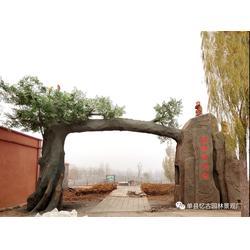 假山假树大门,水泥假树大门制作方法图片