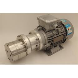磁力齿轮泵_斯拓机电(在线咨询)_云浮齿轮泵图片