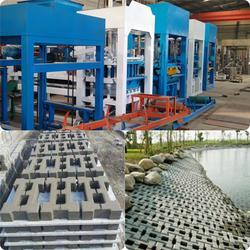 江苏砖机 天匠专业制砖机厂家 建筑垃圾制砖机图片