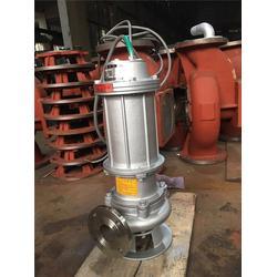 内蒙古防爆排污泵-防爆排污泵现货销售-奥邦制泵图片