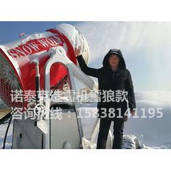 国产造雪机诺泰克品牌 人工造雪机一小时造雪量图片