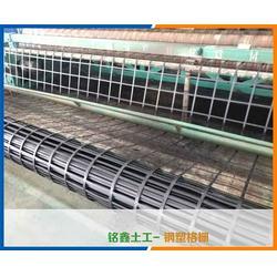 矿用钢塑格栅-铭鑫工程材料(在线咨询)-北京矿用钢塑格栅图片