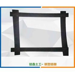 山东铭鑫土工材料 钢塑土工格栅出售-江西钢塑土工格栅图片