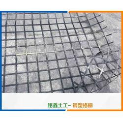钢塑土工格栅厂家_出售钢塑土工格栅厂家_铭鑫工程材料(多图)图片