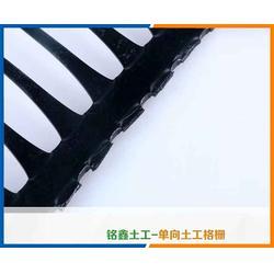 铭鑫工程材料,单向塑料土工格栅出售,单向塑料土工格栅图片