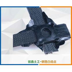 凸结点钢塑格栅_凸结点钢塑格栅哪家好_铭鑫工程材料图片