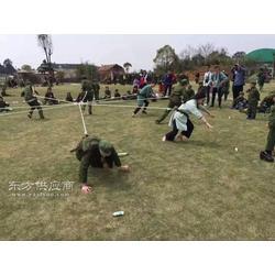 跑男游戏绳草坪拉力游戏多人舞台游戏节目节日项目图片