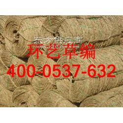绿化草绳生产厂家图片