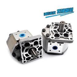 天津双联齿轮泵-万隆顺 品质可靠批发