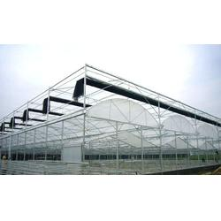 温室大棚设计_青州中泰温室(在线咨询)_昌乐温室大棚