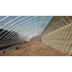 日光温室结构-峄城区日光温室-青州市中泰温室工程(查看)图片