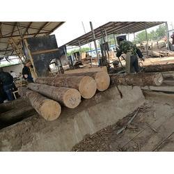 聊城木材加工-日照国鲁木材加工-山东木材加工厂图片
