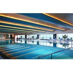 露天游泳池設計-露天游泳池-碧浪菲爾別墅泳池(查看)批發