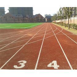 体育场塑胶跑道施工、合肥乘林(在线咨询)、安徽塑胶跑道图片