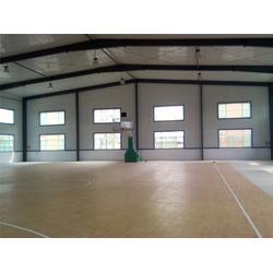 娄底液压篮球架、冀中体育公司、篮球场用电控液压篮球架图片