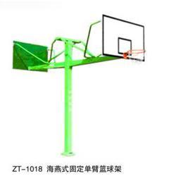 小区广场用固定篮球架定制_大兴区固定篮球架_冀中体育(查看)图片