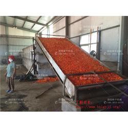 大型网带式辣椒烘干机图片