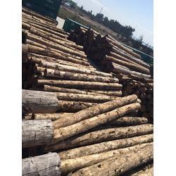 定尺加工輻射松建筑木材量大從優