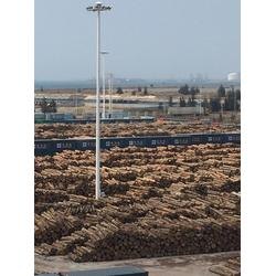 海南辐射松建筑方木-海南嘉航木业销售-辐射松建筑方木商图片