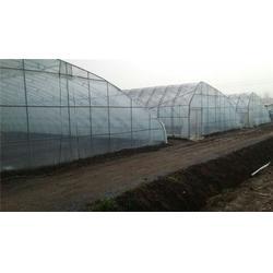建源温室 可移动温室大棚材料 可移动温室大棚