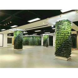 植物墙施工-美尚园艺专业安装-泉州植物墙图片