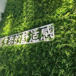 植物绿雕-美尚园艺(在线咨询)绿雕图片