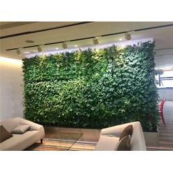 特色绿雕-美尚园艺(在线咨询)澳门绿雕图片