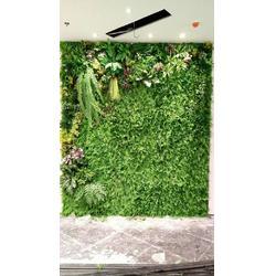 植物墙室内-美尚园艺(在线咨询)广安植物墙图片