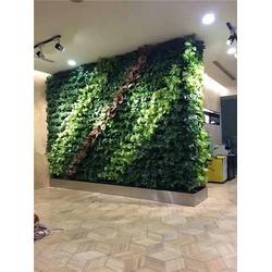绿雕是什么-绿雕-美尚园艺专业承接安装(查看)图片