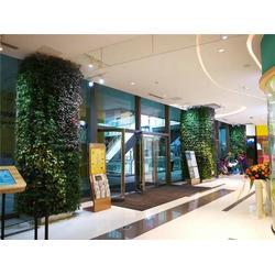 美尚园艺-可加盟代理(图) 植物墙定做 铜仁植物墙批发